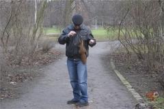 Белки в Германии