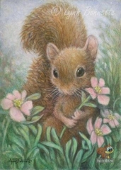4webACEOPickingaFlowerSquirrelbyLBB (Small).jpg
