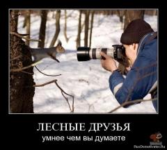 Лесные друзья.jpg