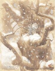 James Browne2.jpg