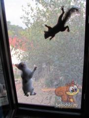 Леха-Габи-окно.jpg